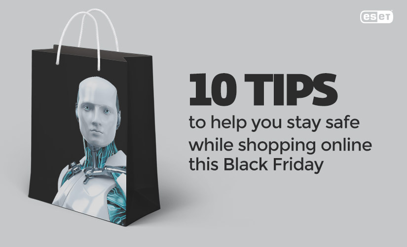 10 tips to help you stay safe while shopping online this Black Friday.