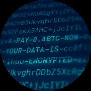 [Translate to Greece - Greek (el_GR):] Ransomware